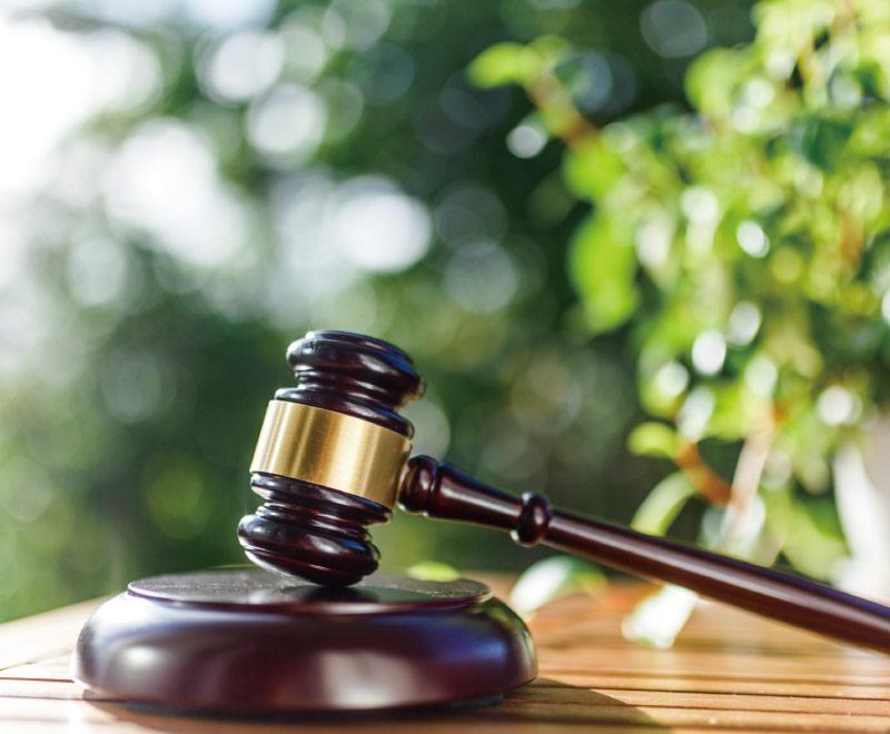 不倫の裁判